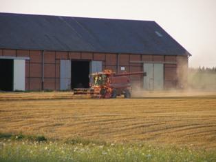 Il est temps d'agir pour diversifier les récoltes