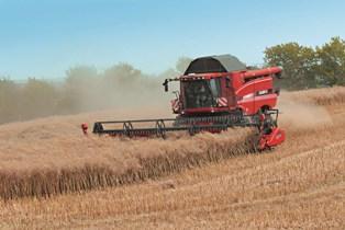 Maïs, blé et soja en hausse à l'unisson des bourses
