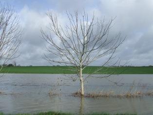 Episode de fortes pluies sur les régions méditerranéennes