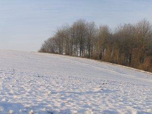 Quelle tendance pour cet hiver ?