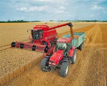 Maïs, blé et soja en hausse à cause de la sécheresse