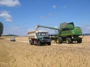 Même à 200 euros, la tonne de blé n'est pas chère !