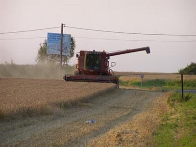 Céréales en hausse dans un marché inquiet pour l'approvisionnement