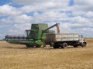 Céréales en hausse, le marché pariant sur une baisse de production