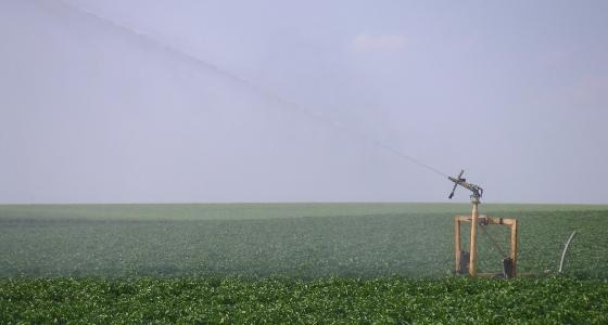 Nouvelle menace de sécheresse en 2012 en France !