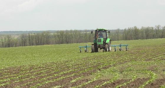 Quel modèle choisir pour produire des céréales en Ukraine?