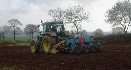 Le soja en légère hausse, le blé et le maïs en baisse
