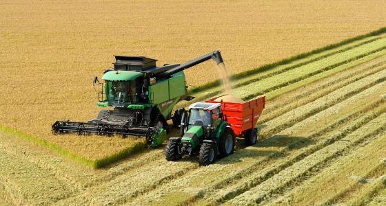 Un rapport de l'Usda soutient le blé et le soja