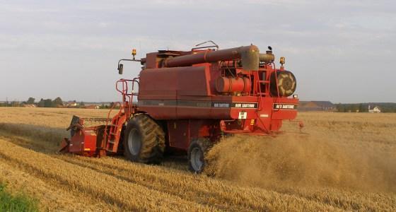 L'Agpb estime à 33,9 Mt la production de blé en France