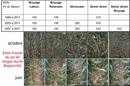 Impact du travail du sol sur les teneurs en Don du blé tendre (essai de longue durée de Boigneville-91)