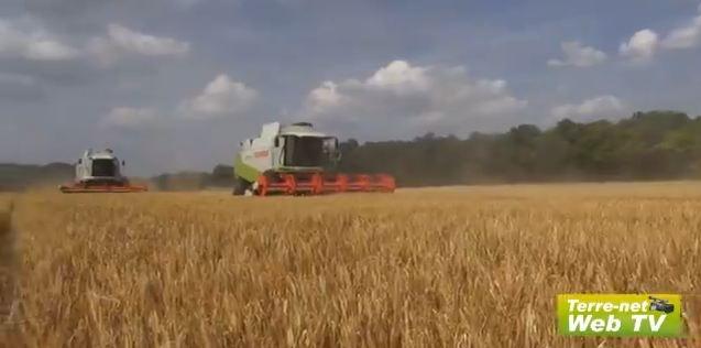 Christian Grosbois : « Déçu en orge, inquiet en blé, rien en colza... »