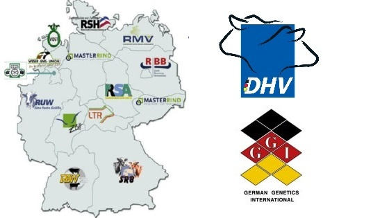 coopératives d'insémination allemandes