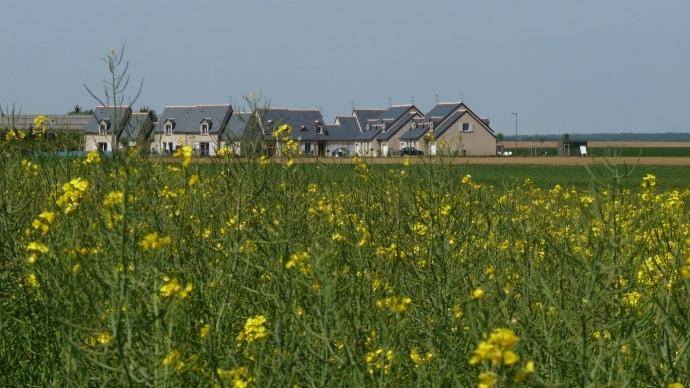 Pavillons et terres agricoles