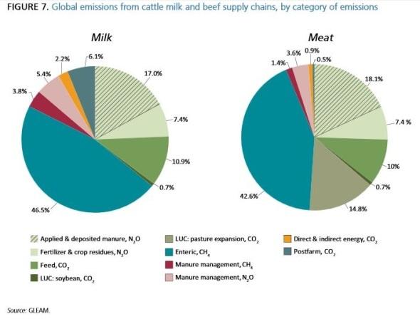 Impact de l'élevage bovin sur le changement climatique