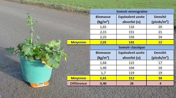Mesures de la biomasse aérienne des colzas en entrée d'hiver.