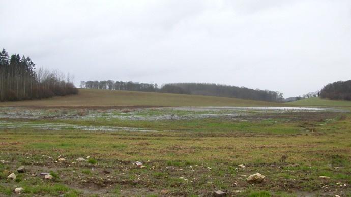 Parcelle inondée