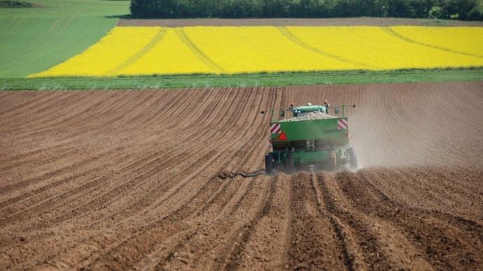 Pr parer les plants de pomme de terre avant l 39 implantation - Traitement pomme de terre ...