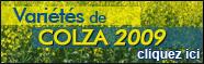 Trois nouvelles variétés chez Euralis Semences pour 2009
